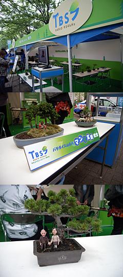 20060604マン盆栽イベント1