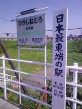 4e02d859.jpg