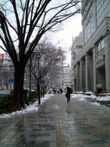 雪の東京-2