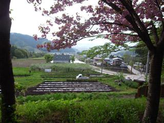 間山温泉公園より