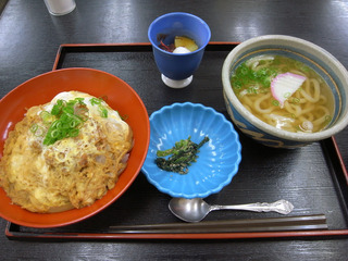 ヒレカツ丼+うどん定食