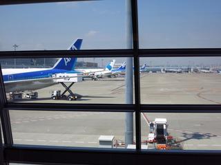 飛行機を眺めながら