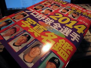 プロ野球名鑑2014