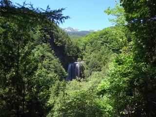遠くから滝