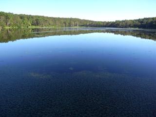 神秘的な池