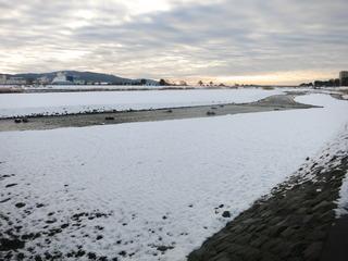 朝焼けの酒匂川