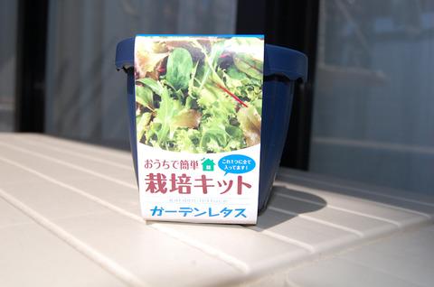 おうちで簡単「栽培キット」