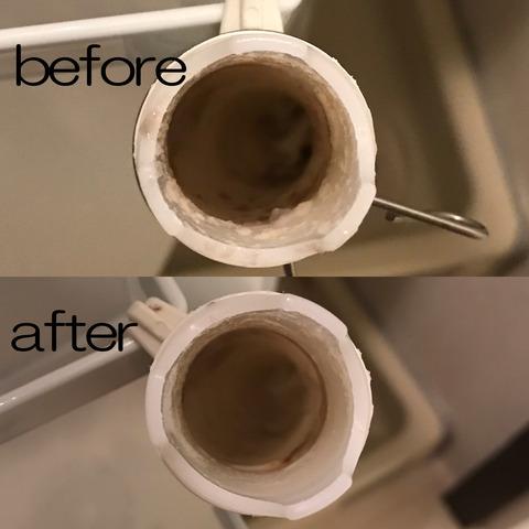 洗濯機の排水口掃除の続きとトイレ掃除