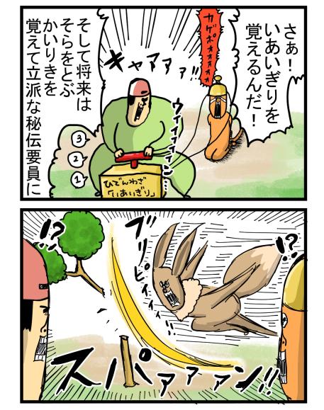 ポケモン2-2