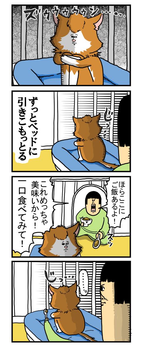 捨て猫2-1