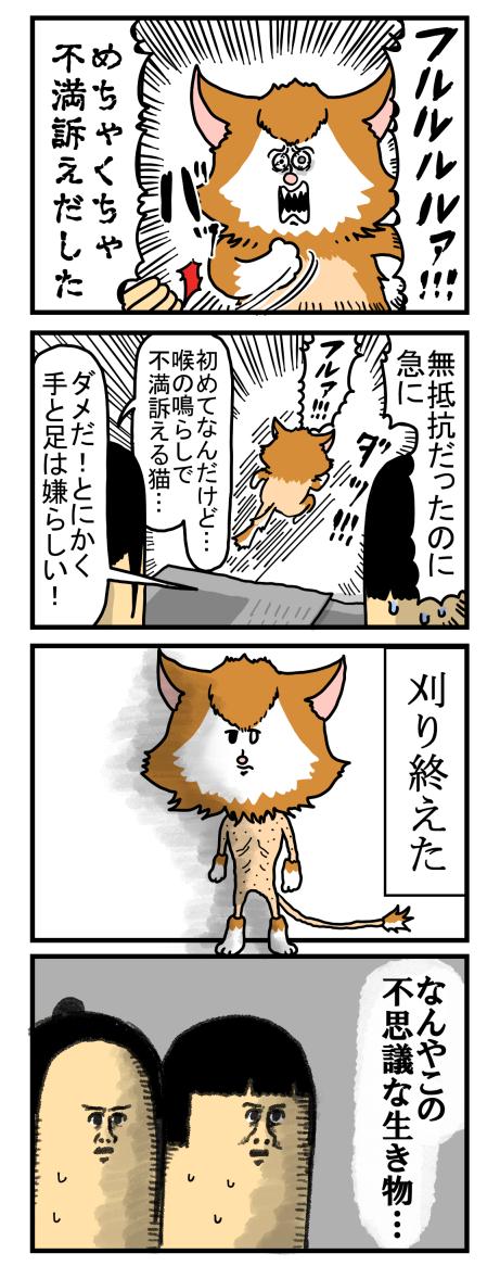 捨て猫6-2