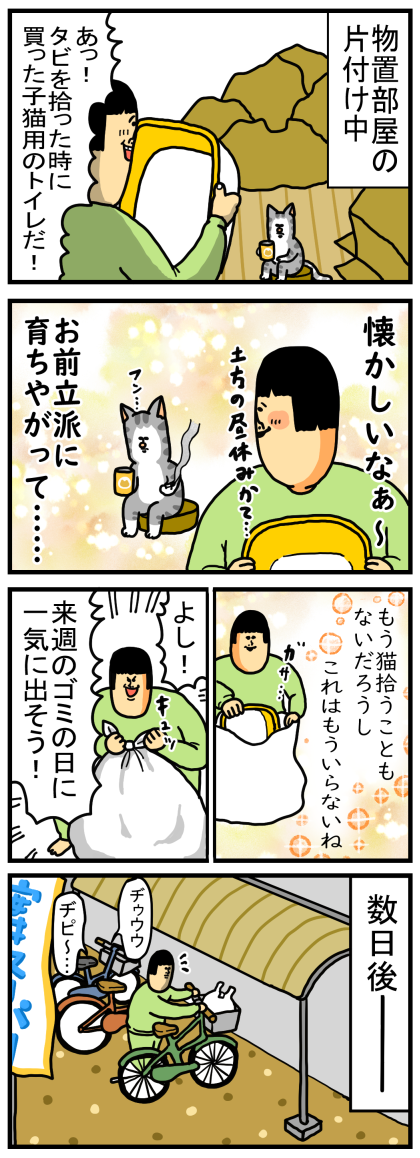 子猫1-1