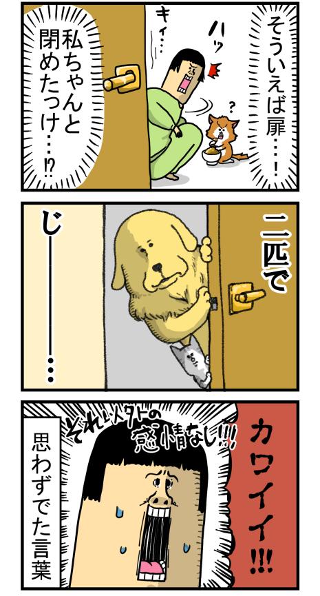 捨て猫5-3