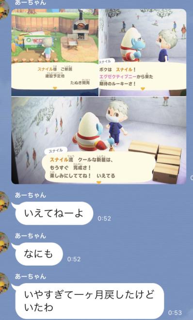 どうぶつの森10-7