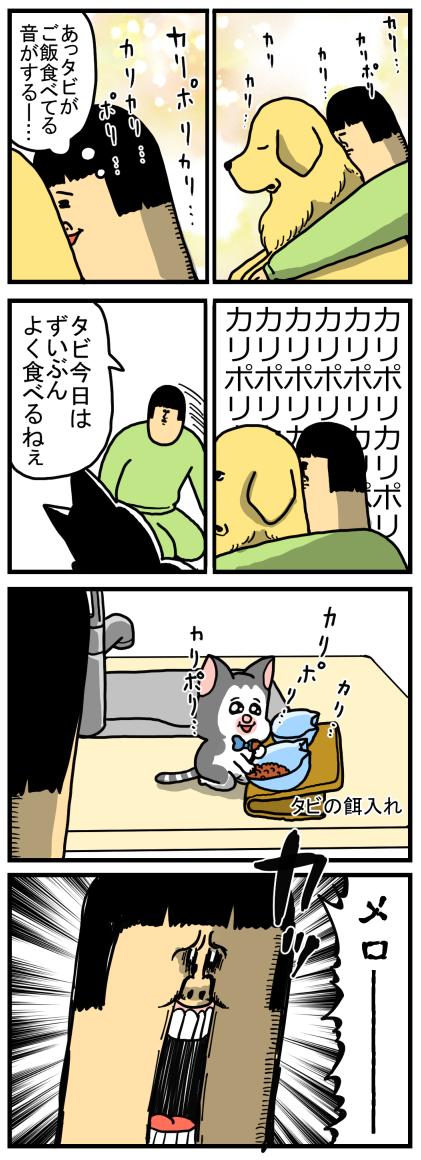 子猫8-1