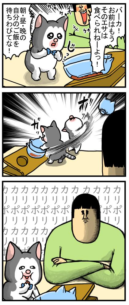 子猫8-3