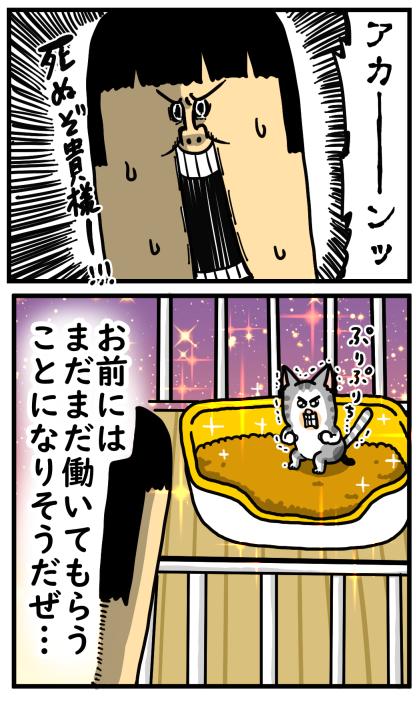 子猫1-3
