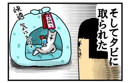 捨て猫3-3