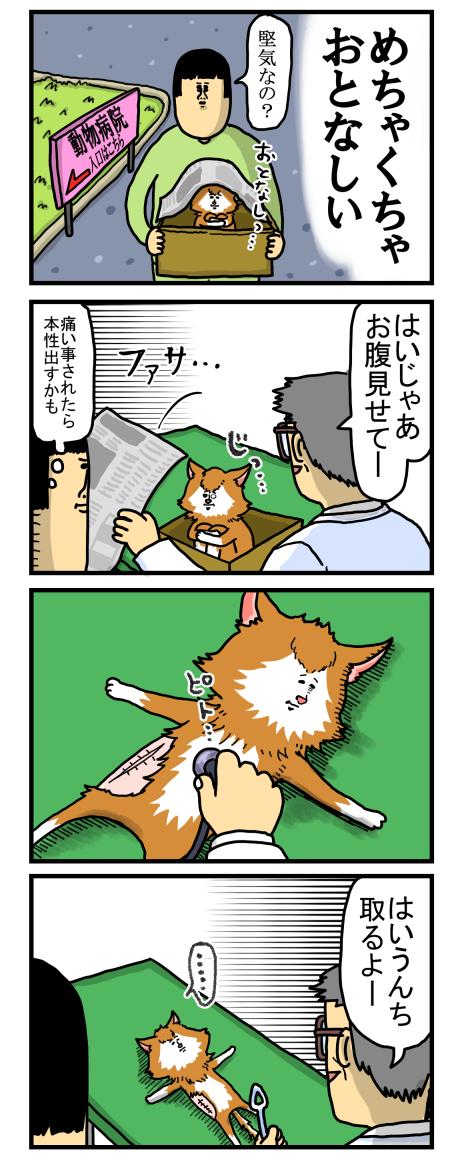 捨て猫1-2