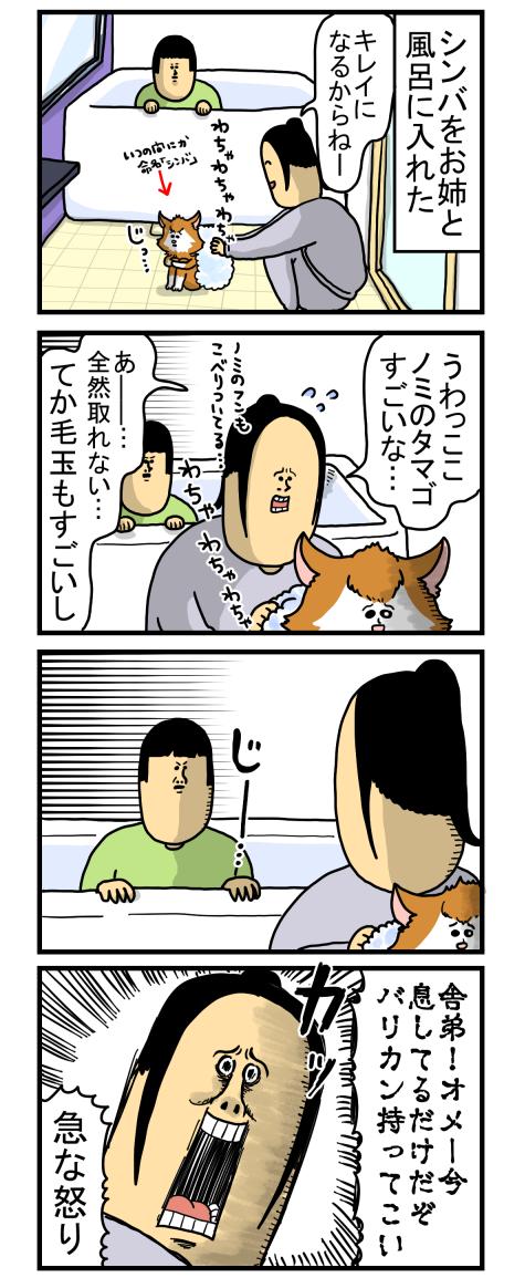 捨て猫4-1
