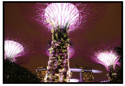 シンガポール1日目46