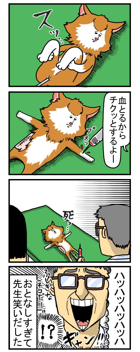 捨て猫1-3