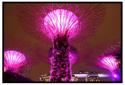 シンガポール1日目45