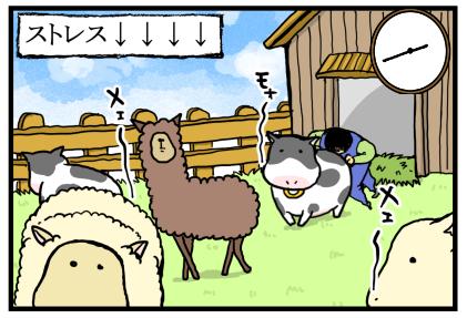 牧場物語15