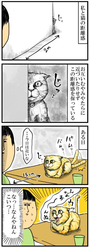 57私と猫