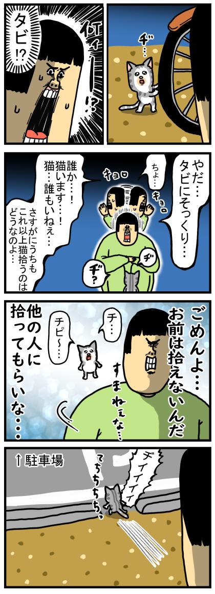 子猫1-2