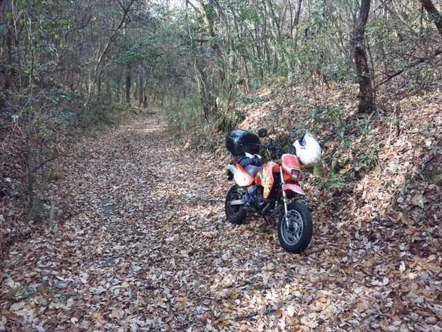 bike0830