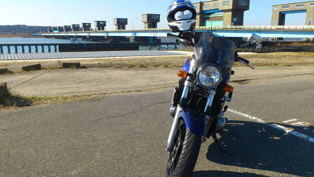 bike1293