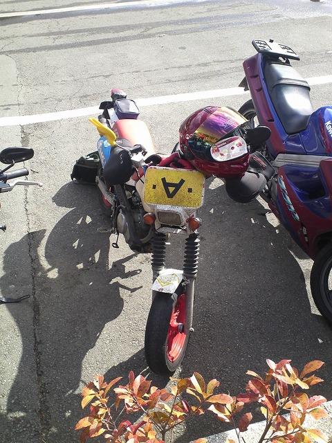 bike1437
