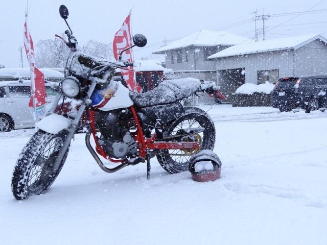 bike1219