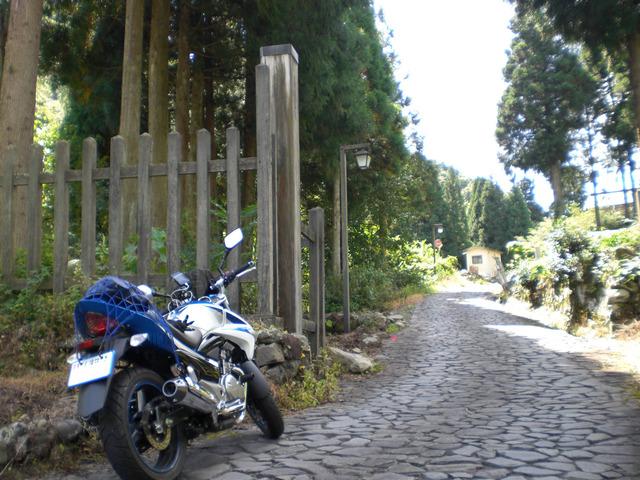 bike_1394117325_95407_m