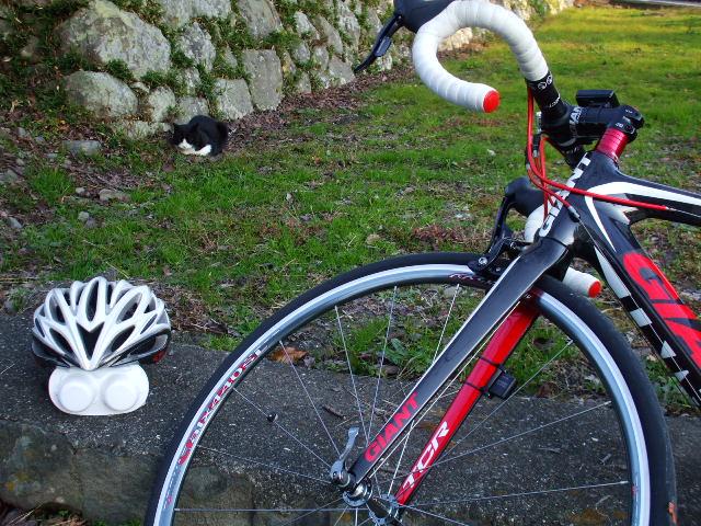bike0845