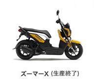 btn_bike_zoomerx110