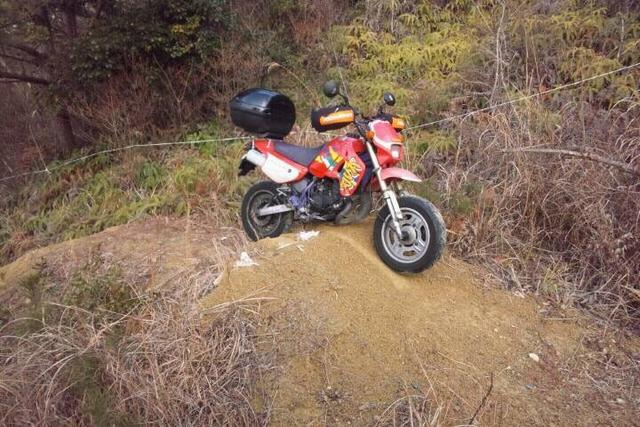 bike1272