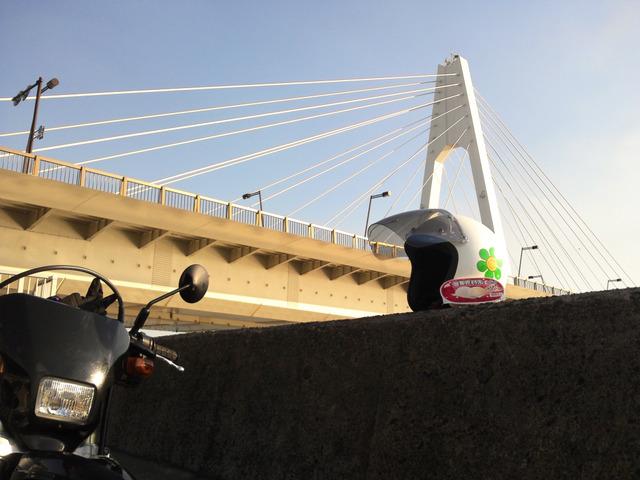 bike0869