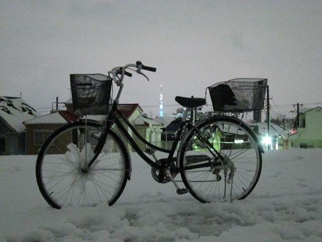 bike1228