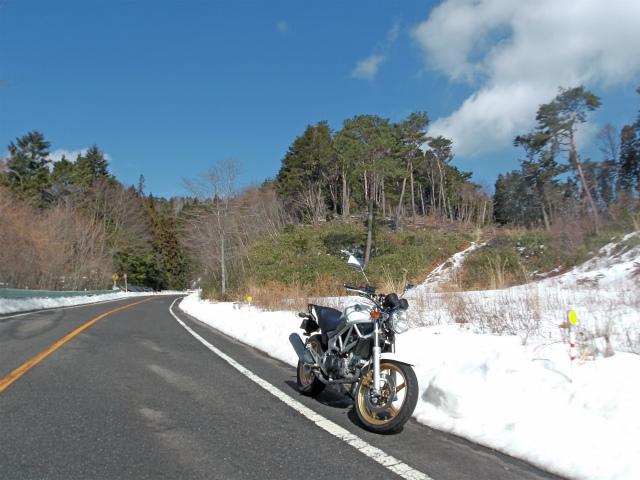 bike1394