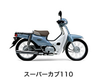 btn_bike_scub110