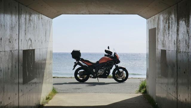 bike1491