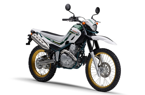 SEROW FINAL EDITION_2020_パープリッシュホワイトソリッド1_3