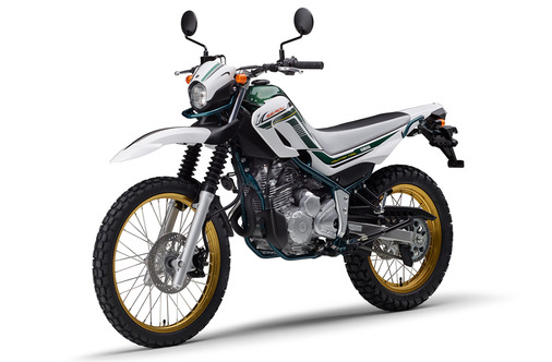 SEROW FINAL EDITION_2020_パープリッシュホワイトソリッド1_4