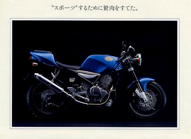 suzuki_goose