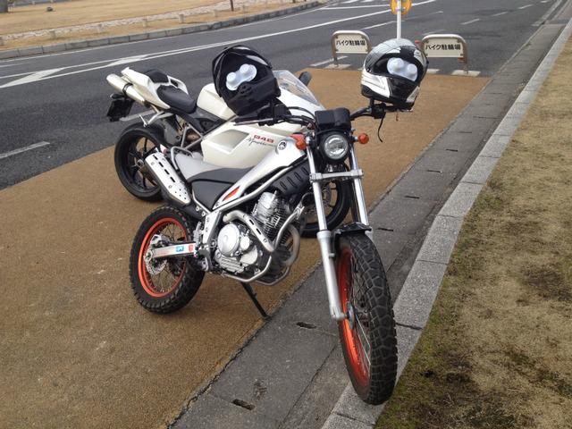 bike1319