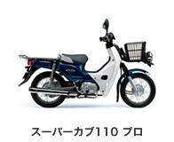 btn_bike_scub110p