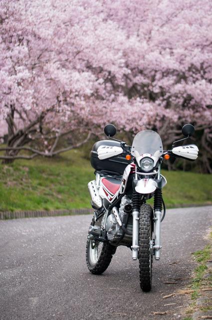 bike_1394117325_9203