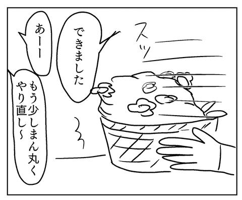 IMG_8751